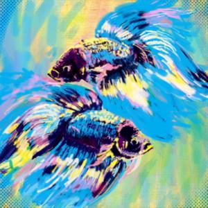 ! ryby