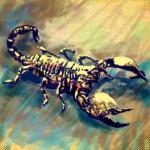 ! skorpion